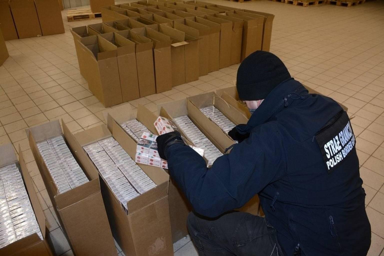Дело — табак. почему беларусь стала центром контрабанды сигарет