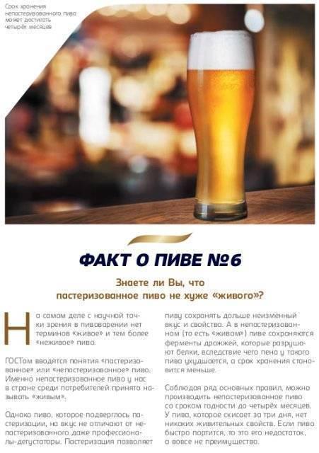 10 интересных фактов о пользе пива - zefirka