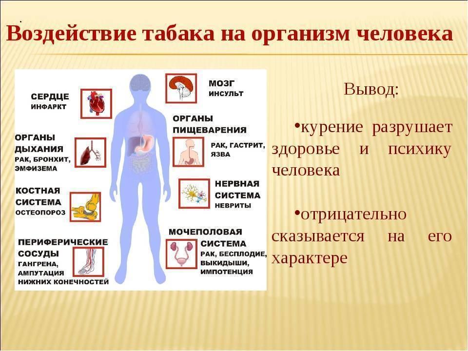 Вред курения: какой вред наносит курение организму человека
