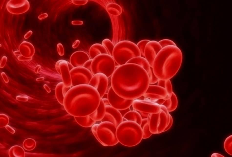Сдавать кровь после алкоголя на гемоглобин в крови
