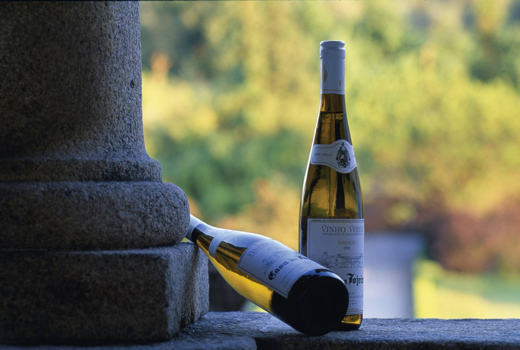 """Какое вино называют """"зеленым"""" и что это означает?"""