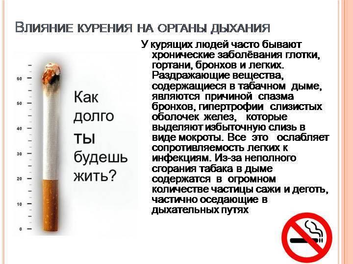 Что происходит с печенью курящего человека