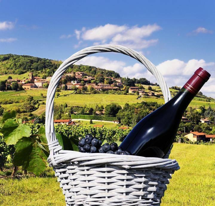 Белое французское вино или красное, как выбрать правильно