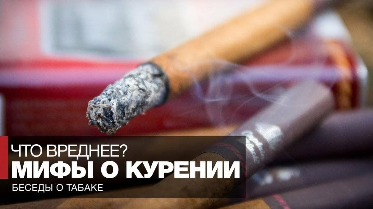 Лучший табак для трубки и как правильно ее набивать