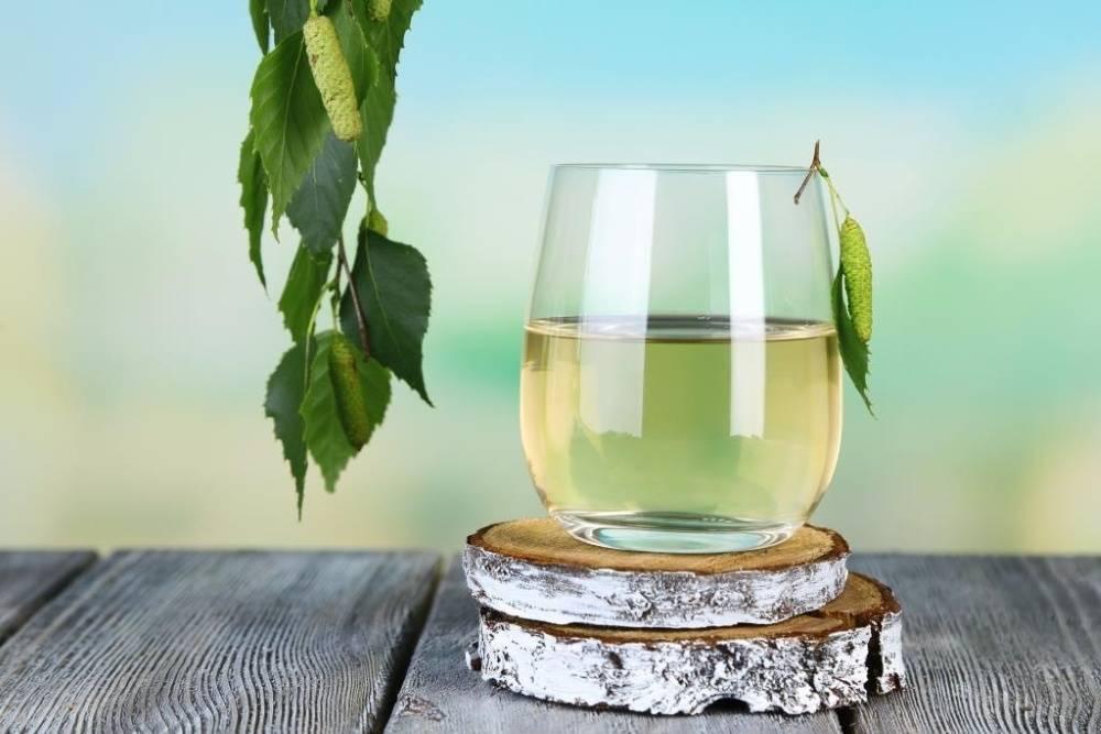 Две недели в движении – рецепты вина из березового сока