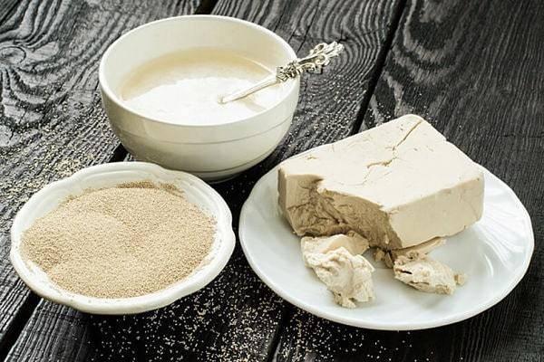 Как поставить брагу на самогон из сахара и дрожжей? правильные пропорции сахарной браги