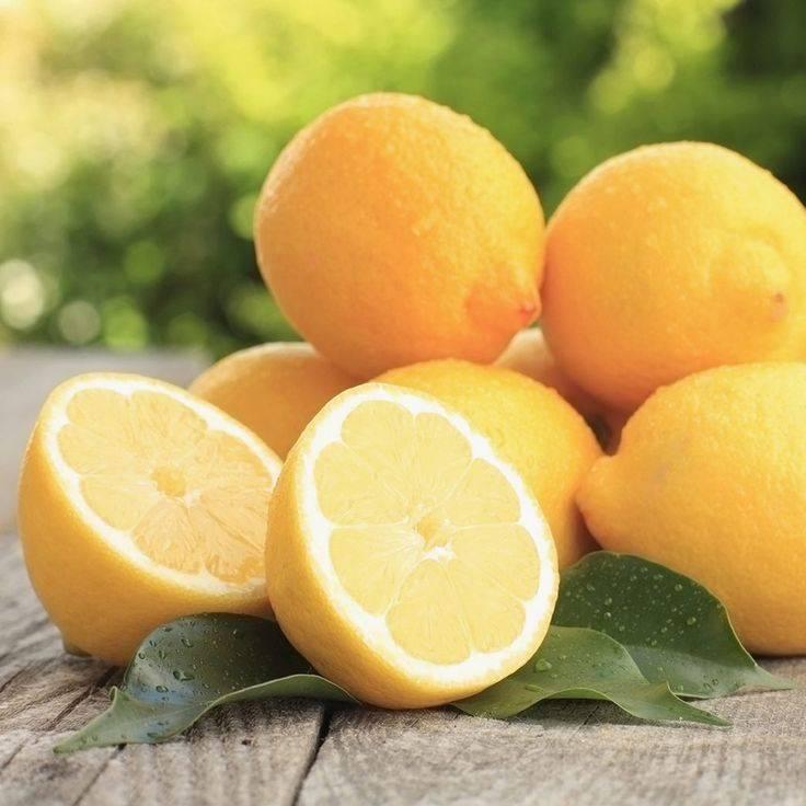 Как настоять самогон на лимоне: домашние рецепты