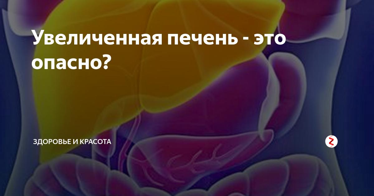 Что значит, если увеличена левая доля печени? причины и лечение гепатомегалии за счет левой доли