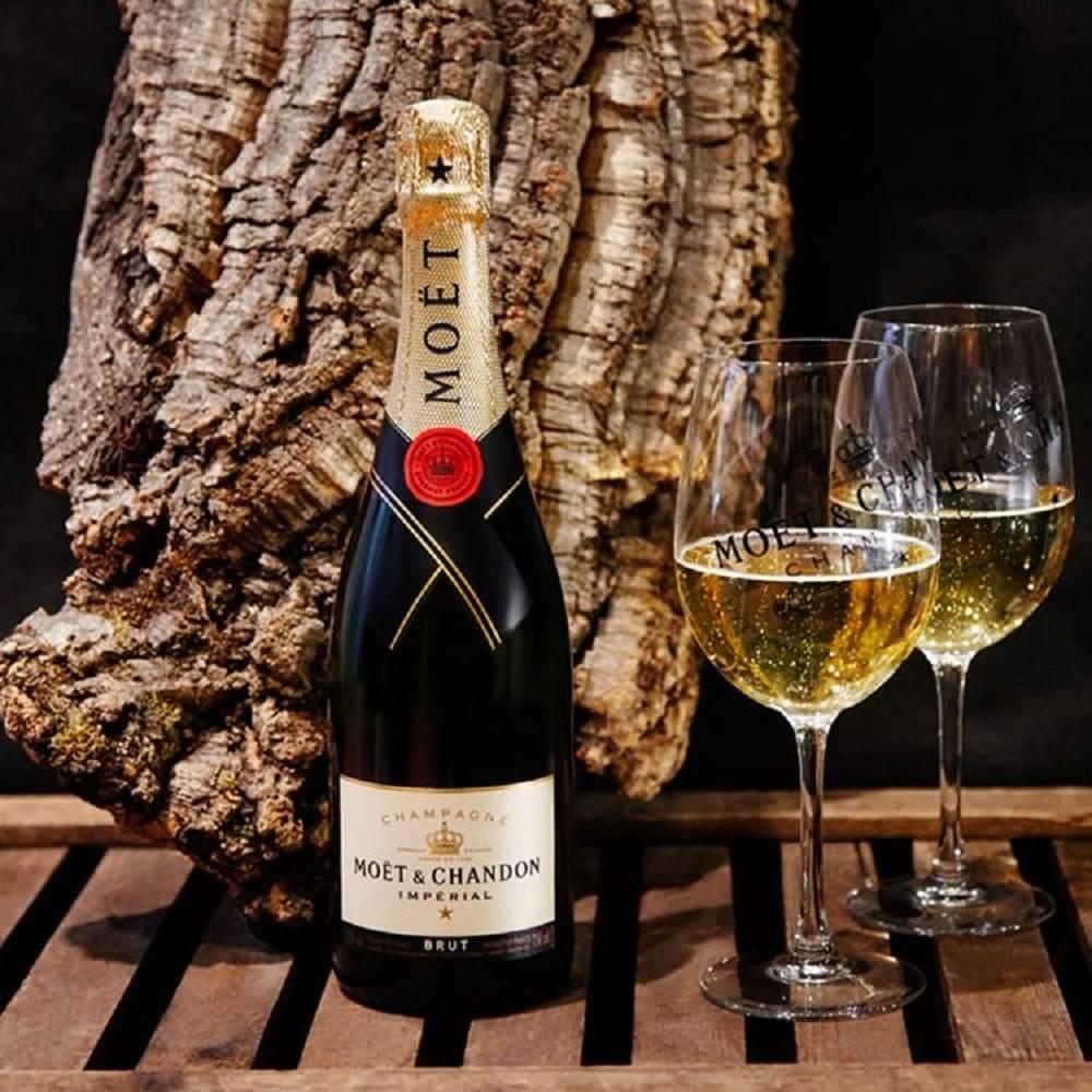 История и виды французского шампанского moet chandon (моет шандон)