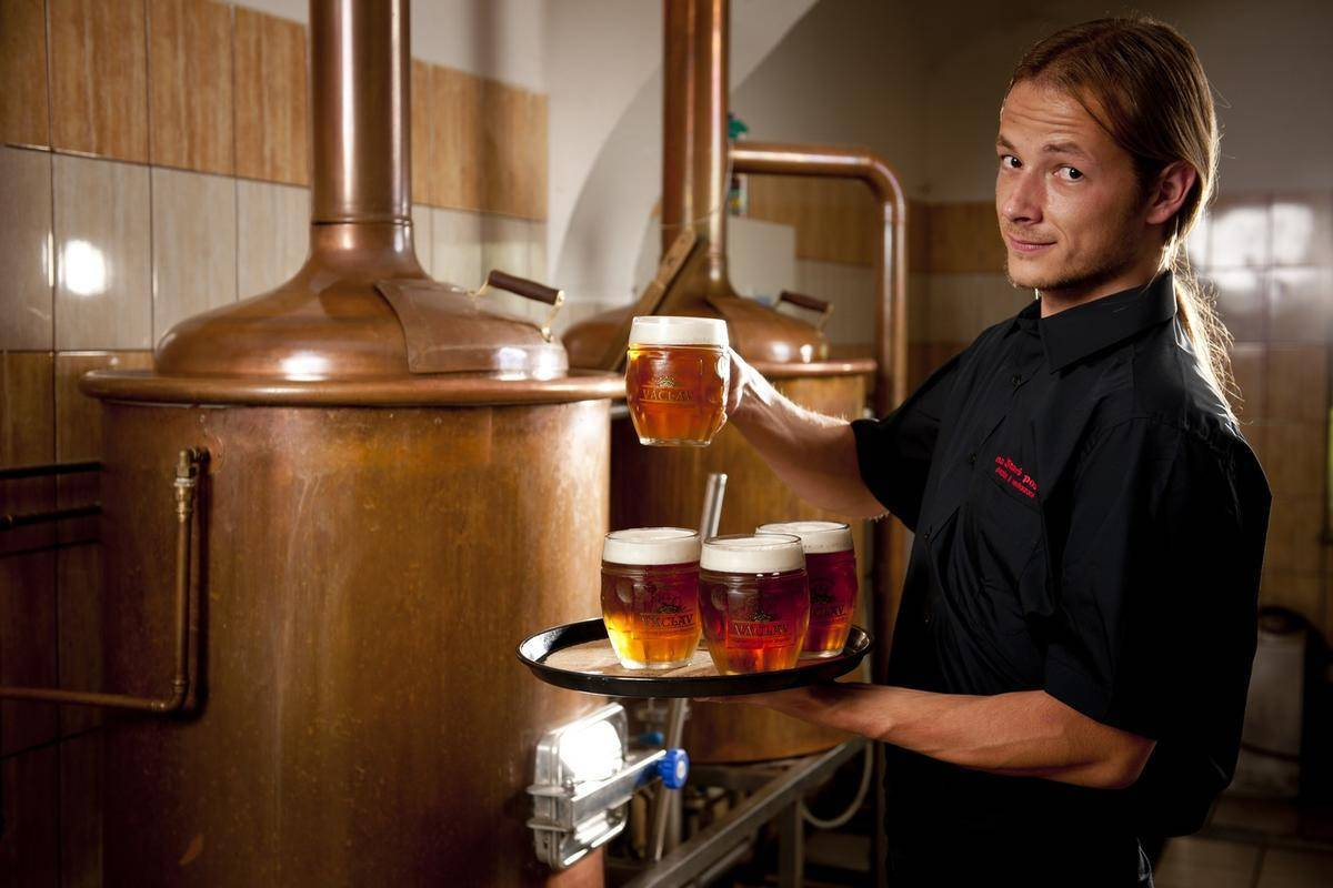 Домашняя пивоварня — какую выбрать, отзывы купивших. узнайте, как выбрать домашнюю пивоварню