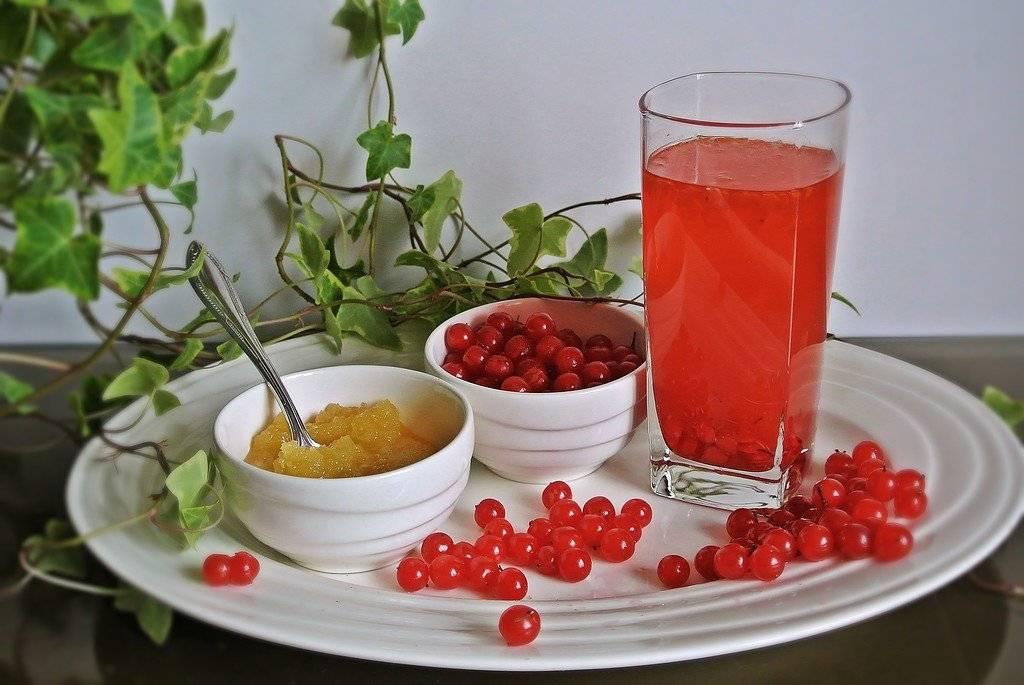 Калина от давления: как заготовить ягоду, как приготовить настой, а также как принимать для давления