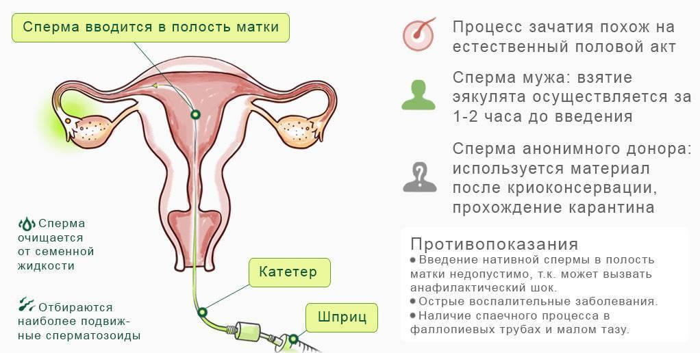 Почему алкоголь убивает вашу сперму и другие факты о мужской фертильности