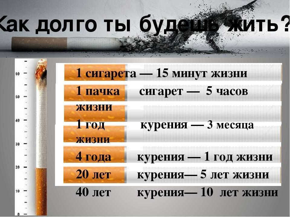 Сколько сигарет в день можно курить без вреда для здоровья? | bezprivychek.ru