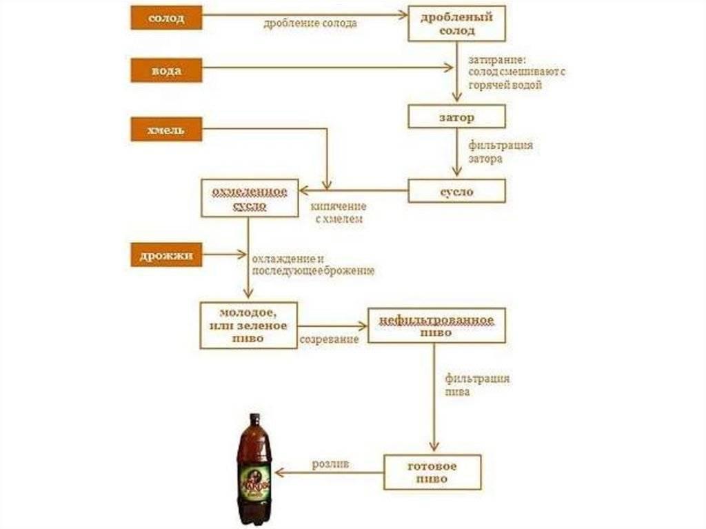 Как изготавливается пиво. порошковое пиво. технология производства пива. как отличить порошковое пиво от натурального? что нужно знать