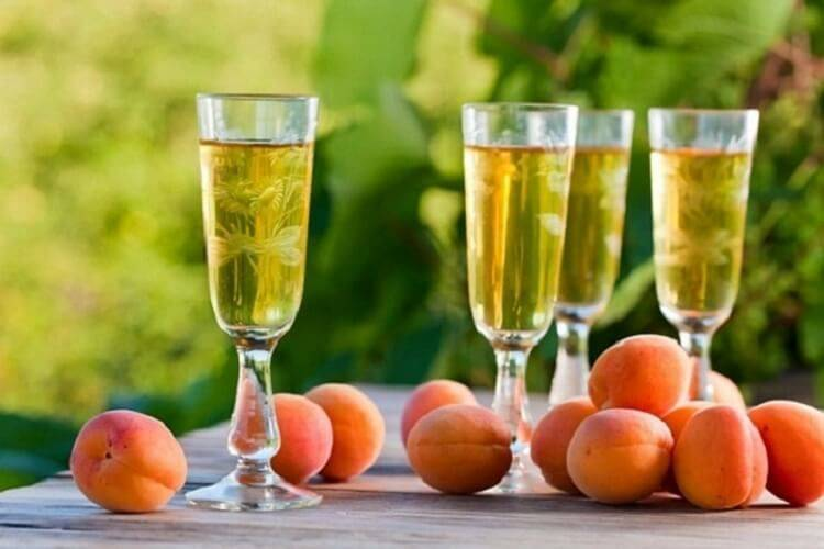 Вино из абрикосового варенья - da4nikpro
