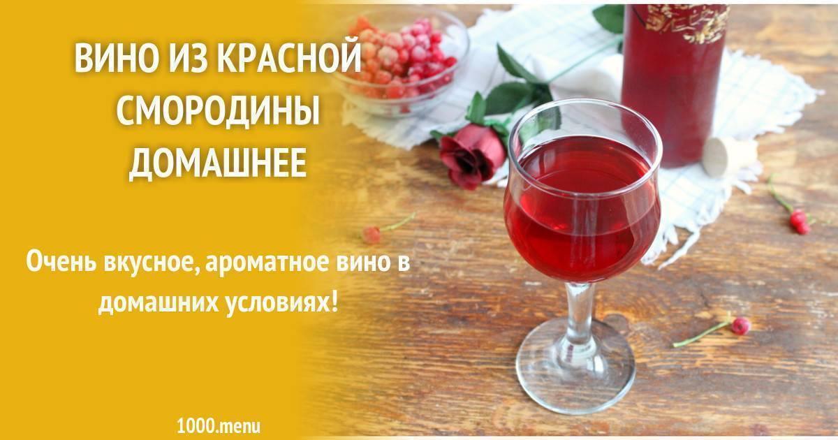 Вино из красной смородины в домашних условиях: 6 простых рецептов
