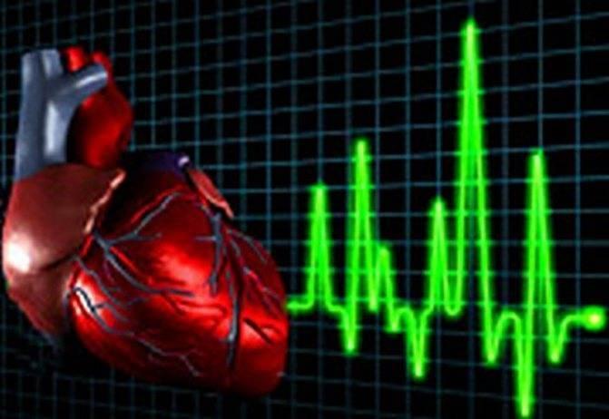 Учащенное сердцебиение после алкоголя: причины, что делать что бы успокоить сердце