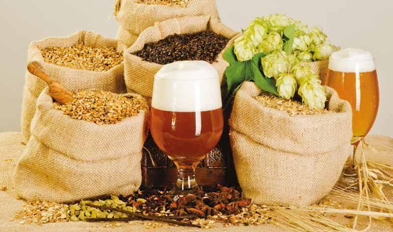 Как сварить пиво в домашних условиях: классический рецепт