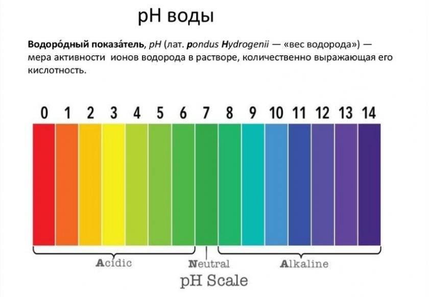 Кислотно-щелочной баланс ph: 4 шага для достижения его оптимального