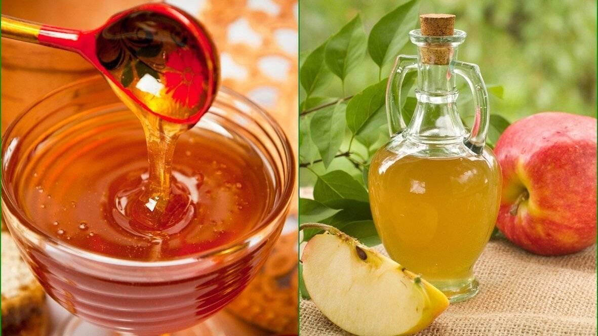 Как приготовить наливку из кислых яблок?