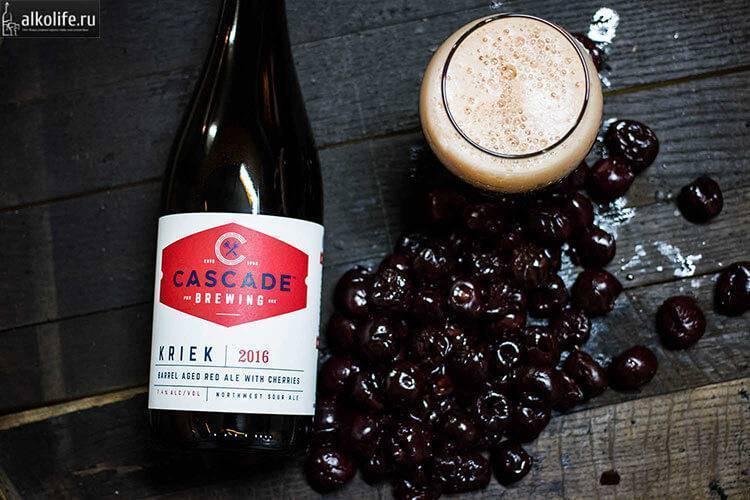 Рецепт вишневого пива для домашнего приготовления ⛳️ алко профи