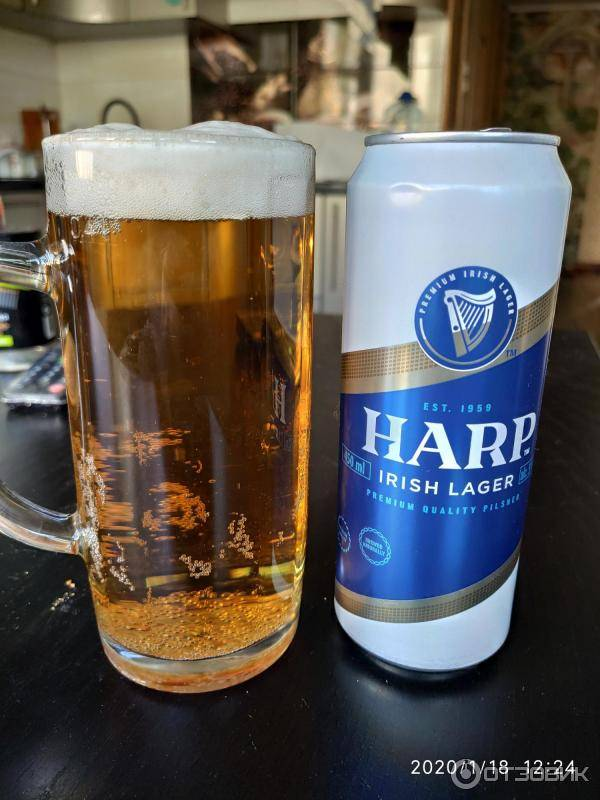 Пиво харп (harp) — особенности, различие вкуса и история возникновения напитка