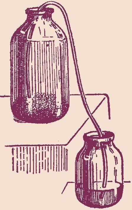 Осветление (очистка) домашнего вина – 8 эффективных методов