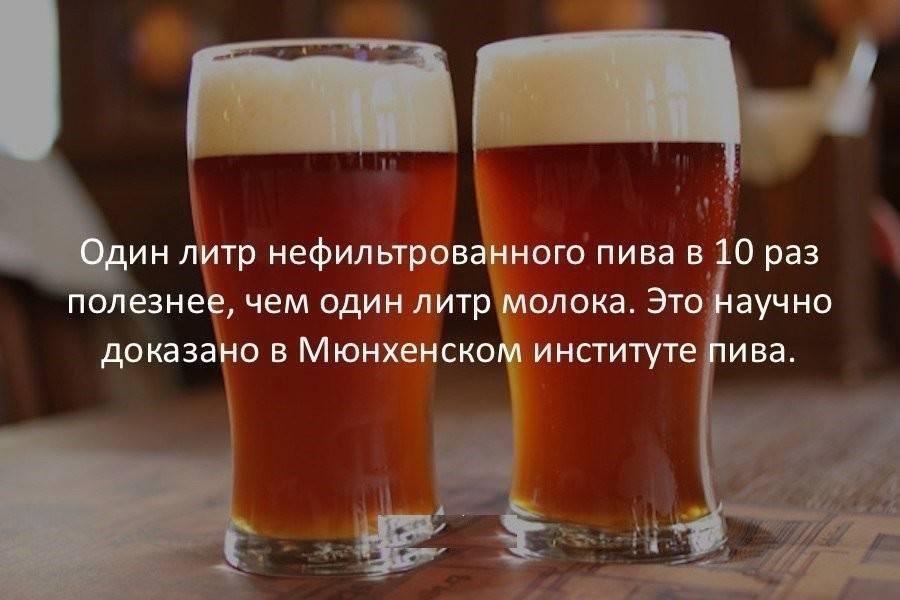 Как выбрать самое вкусное пиво