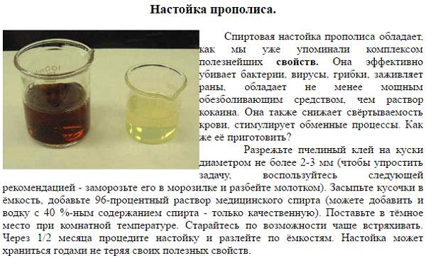 Пчелиный подмор настойка на водке как приготовить