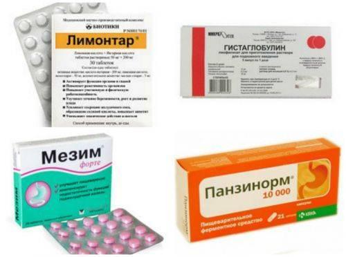 Что из лекарств использовать при обострении панкреатита   rvdku.ru