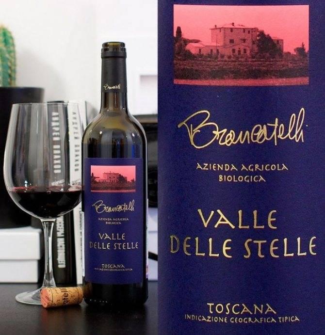 Классификация вин: категории вин по качеству в странах европы (франция, италия, испания, германия) и америки