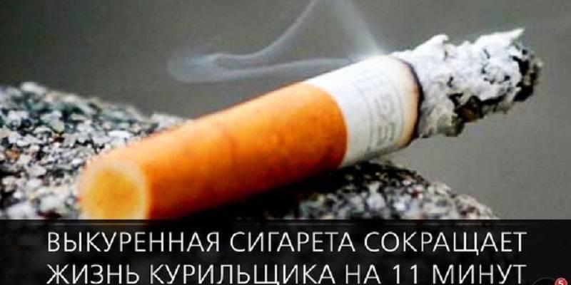 Самые интересные факты о сигаретах