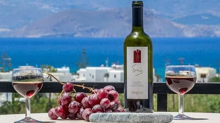 Новые вина греции. особенности греческих вин: история, регионы, категории
