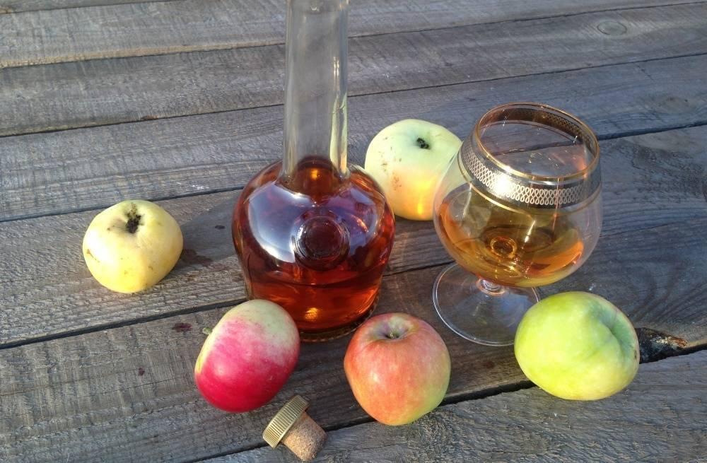Как правильно сделать уксус из яблочного вина / асиенда.ру
