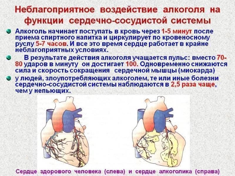Чем вызвано учащенное сердцебиение после алкоголя?