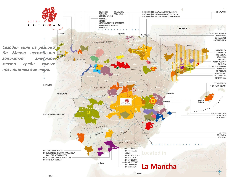 Знаменитые вина франции. классификация вин франции
