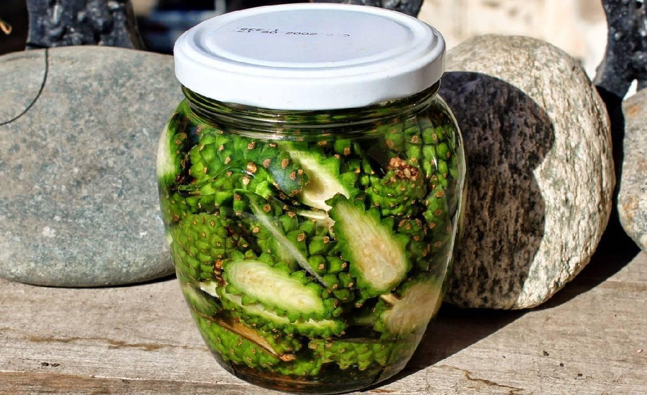 Настойка из сосновых шишек – как готовить и чем полезна