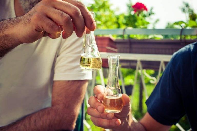 Ракия: что за алкоголь, чем отличаются сербский, болгарский, турецкий варианты напитка, как употреблять, популярные виды этой водки с ценами, рецепты коктейлей | mosspravki.ru