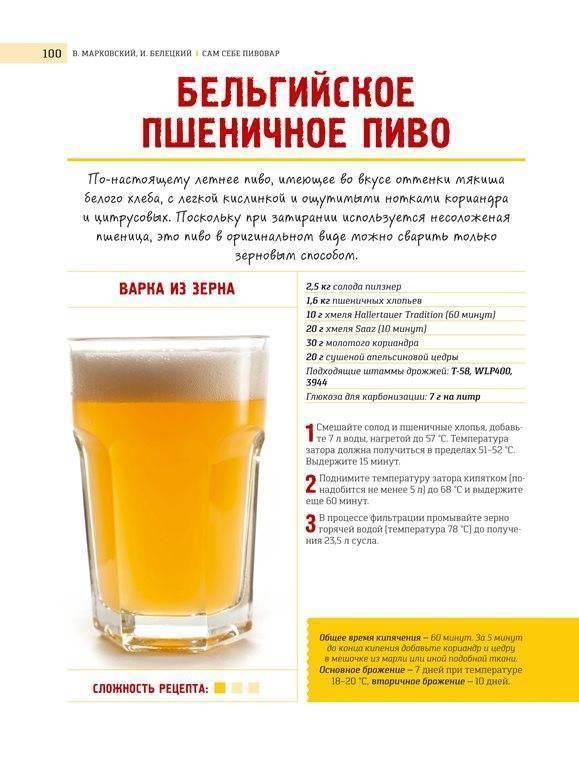 Варим пиво с нуля: пошаговый рецепт немецкого пилзнера