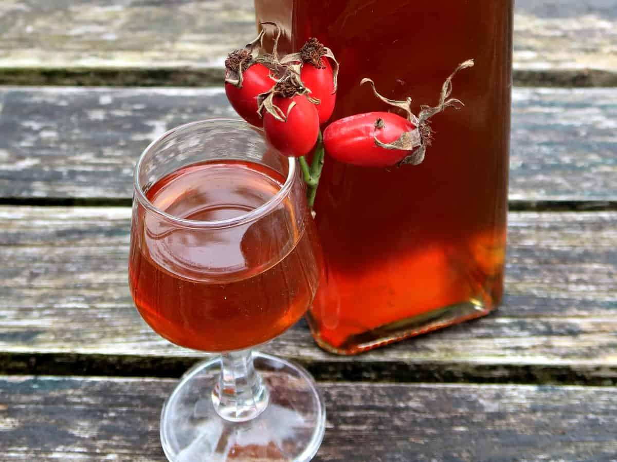 Настойка из шиповника — рецепты целебных напитков на основе крепкого алкоголя