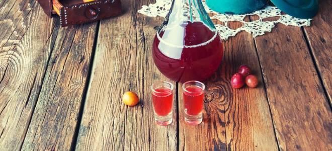 Как сделать вино из сливы в домашних условиях, основные рецепты
