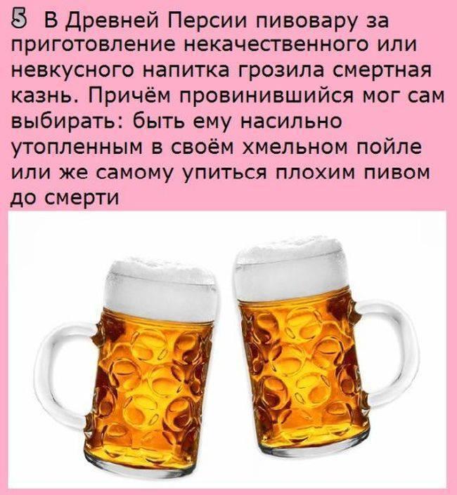 Пиво: как его почитают и какое предпочитают? история и интересные факты