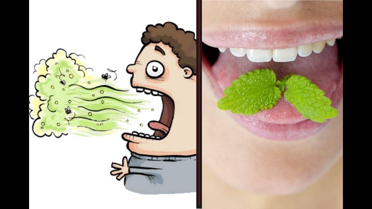 Как убрать запах перегара изо рта быстро - обзор эффективных средств