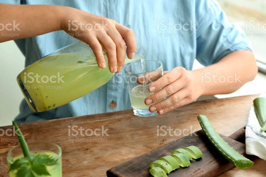 Настойка из алоэ: что лечит, как сделать в домашних условиях на спирту или текиле, как приготовить с соком лимона, с медом и рецепты народной медицины и применение