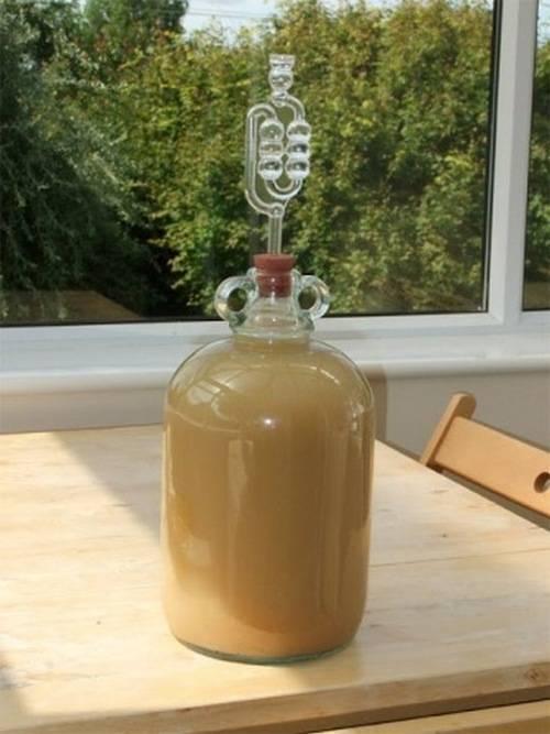Как сделать домашнее яблочное вино крепленое. оригинальный способ крепления вин. рецепт вина из яблок с изюмом