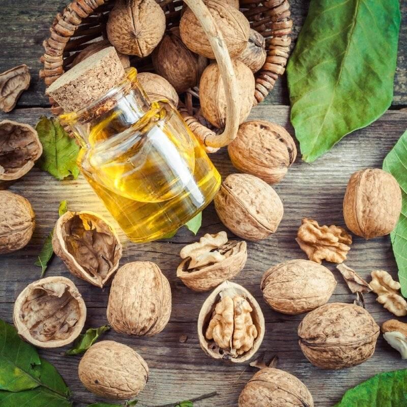 Уникальные свойства настойки грецкого зеленого ореха на основе водки