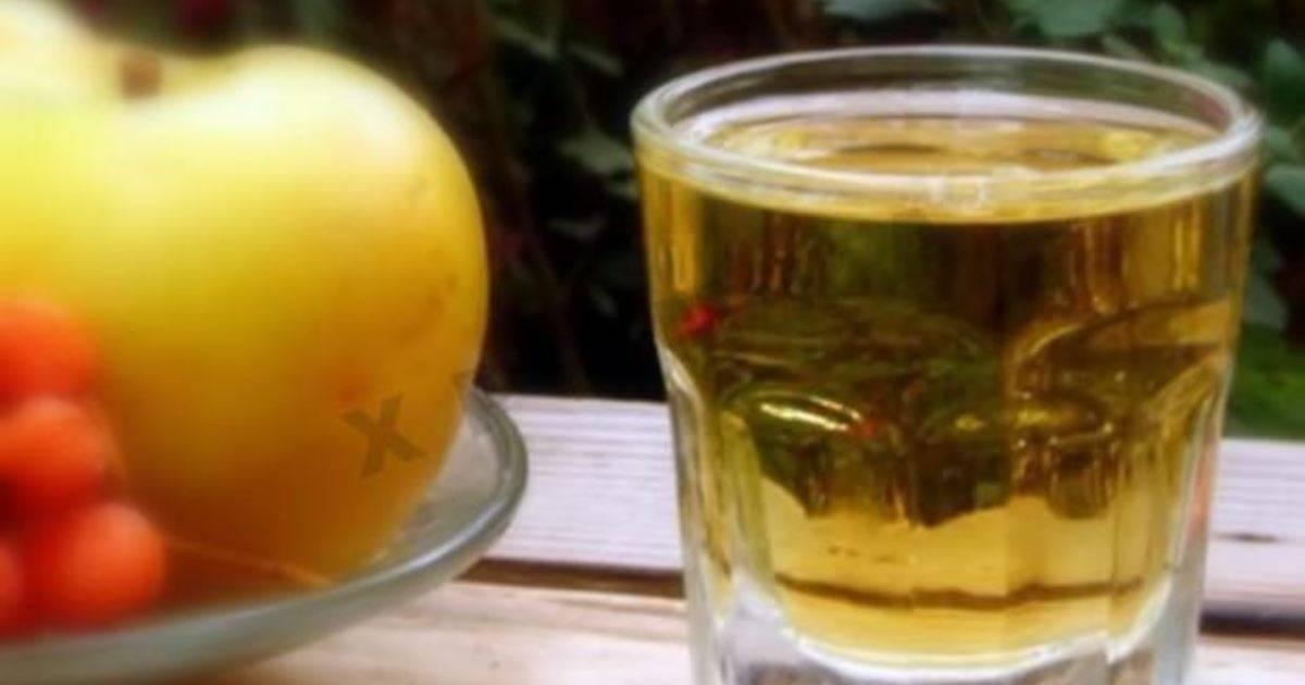 Облепиховое вино / домашнее вино / tvcook: пошаговые рецепты с фото