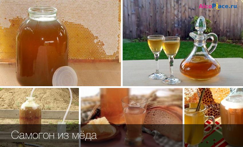 Как правильно делать брагу из меда в домашних условиях: рецепты приготовления