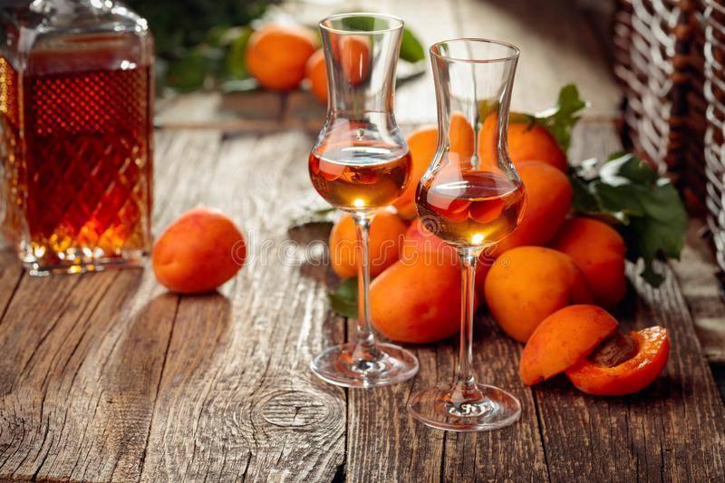 Абрикосовое вино в домашних условиях - пошаговый рецепт