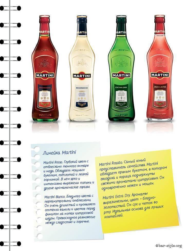 Мартини: история появления, состав, рецепты коктейлей, как пить напиток